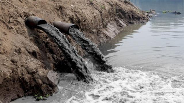 شعر الإنسان ينظف البحار والمحيطات Elmarada